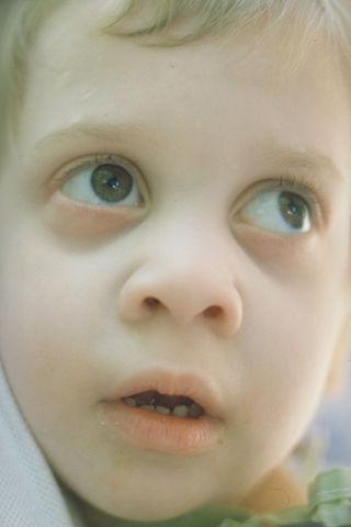980600, Romanian Orphan