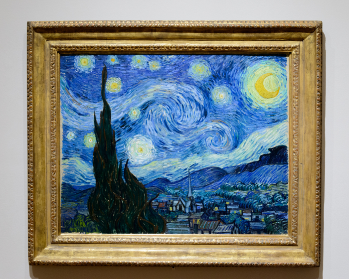 Vincent Van Gogh Starry Night Museum of Modern Art DSC_3552